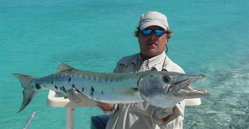 Barracuda go cuba fishing for Fishing in cuba