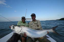 Huge Tarpon by Tor Ola